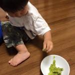 乳幼児期に経験した集中力遊びが土台を作る