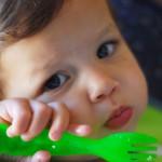3歳までに食事は脳の発達にとても重要です